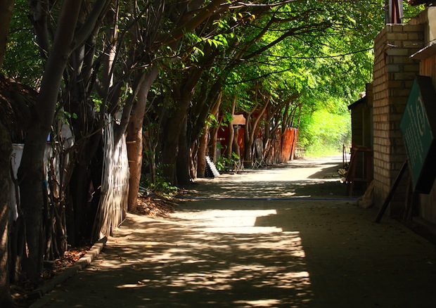 Narrow streets on Gili Trewangen