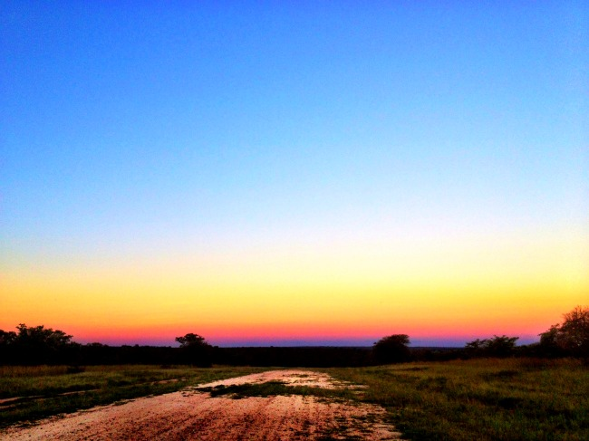 Sunset over Thornybush Game Reserve