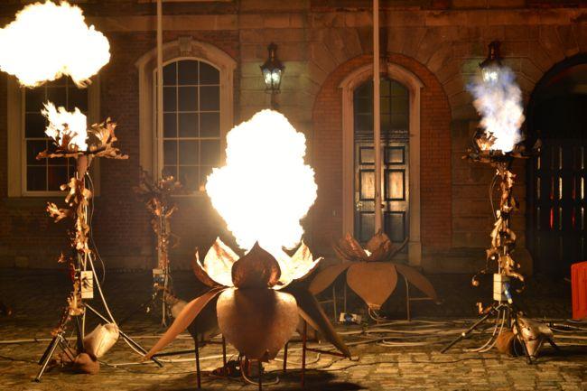 Draculas fire garden in dublin