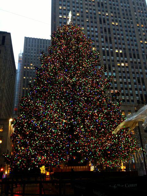 Christmas tree at Rockerfeller Centre