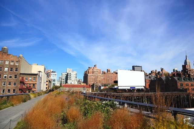 New York High Line120546037