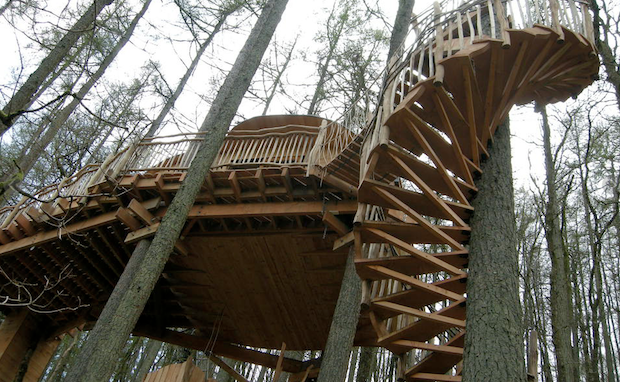 Treehouse experience in Wales
