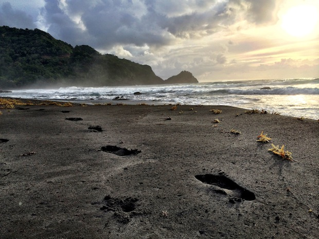 Footsteps on the beach in Dominica