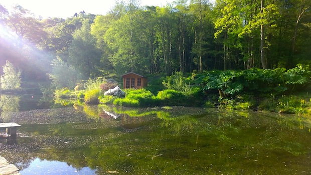 Penmaenpool pond in the morning
