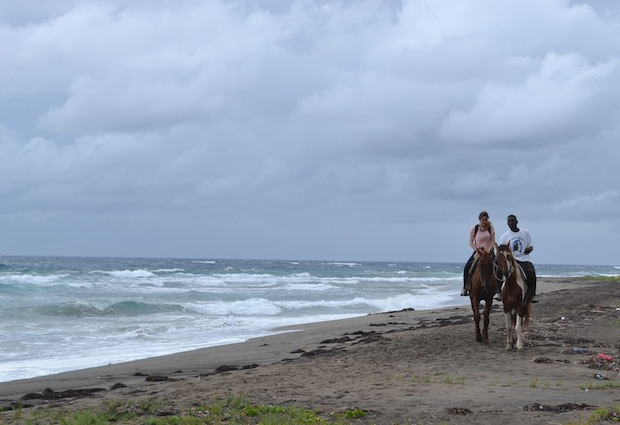 horse riding in st kitts