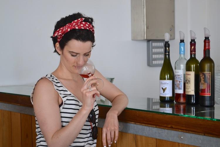 Wine tasting in Cyprus