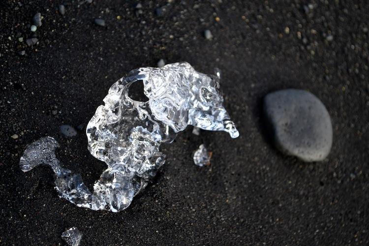 Ice shaped liked a seahorse