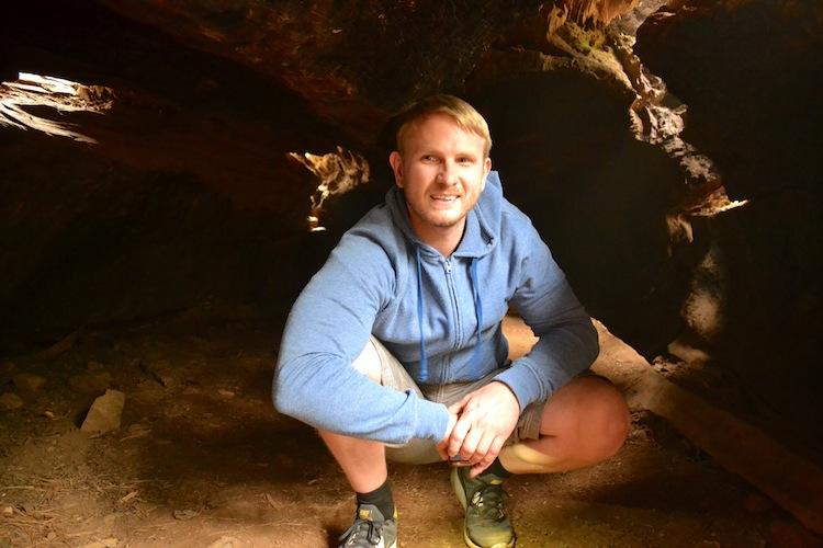 Inside huge trees in yosemite