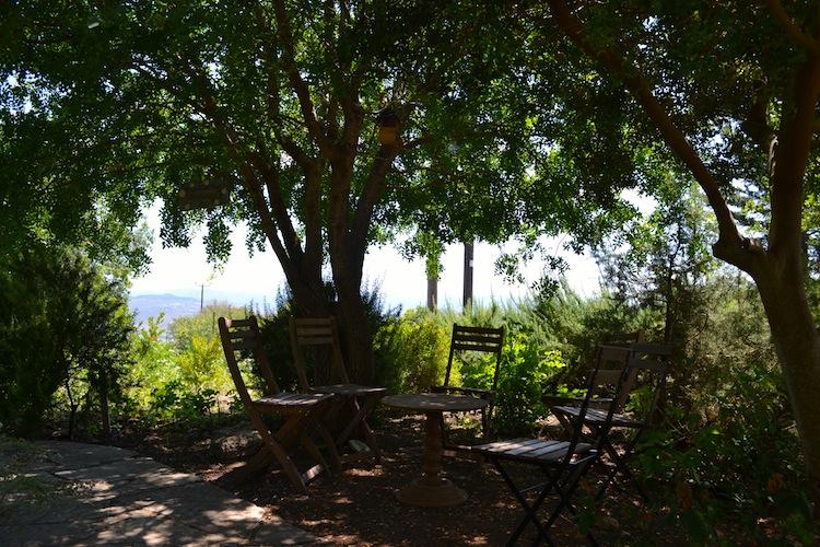 Shady gardens in Cyprus