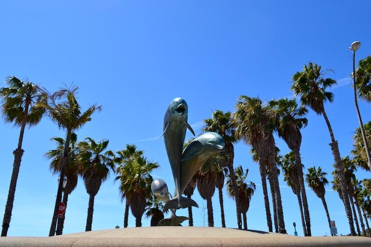 Dolphins at Santa Barbara