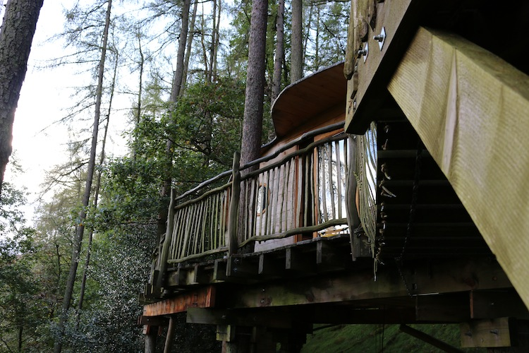 Tree house with living-room.co
