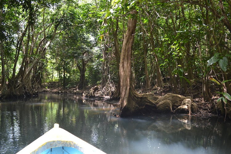 Canoeing in Dominica