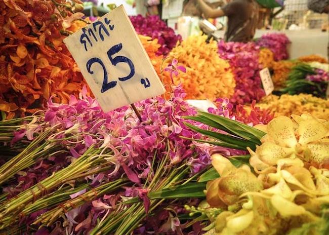 Chiang Mai - Nighttime Flowers