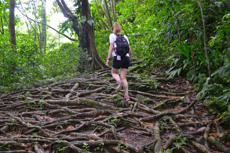 Hiking in Dominica