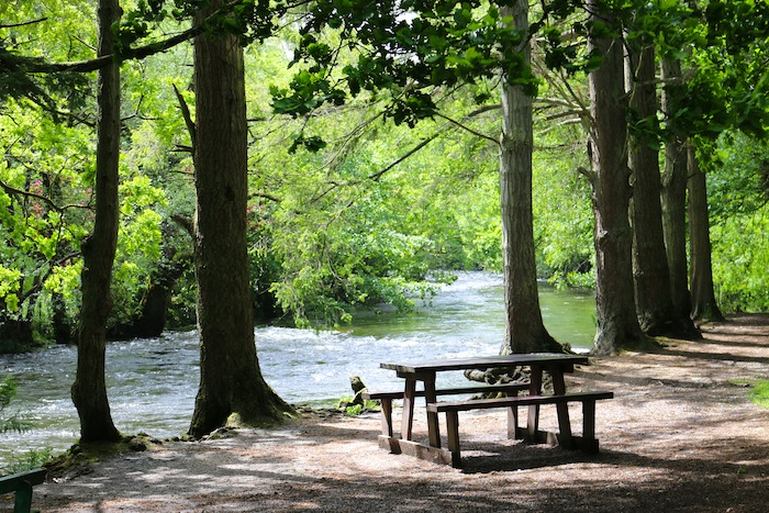 Picnic bench next to the river