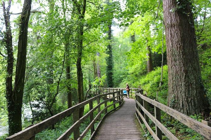 Walking trail in Betws-y-Coed
