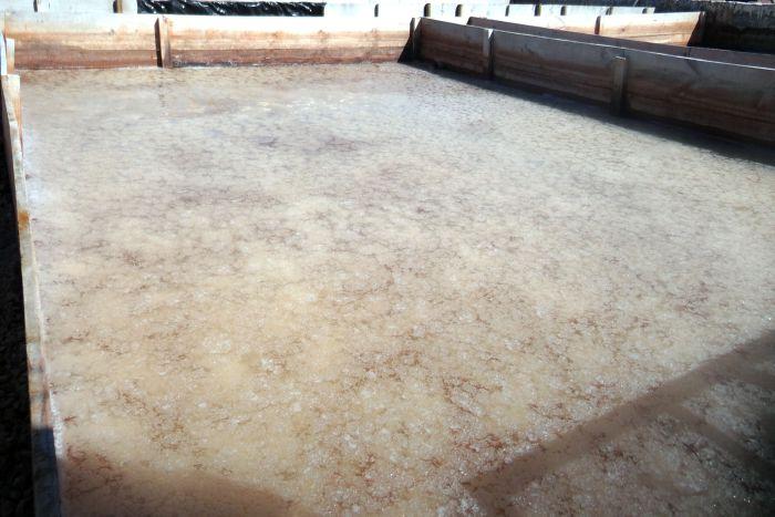 salt flats 10