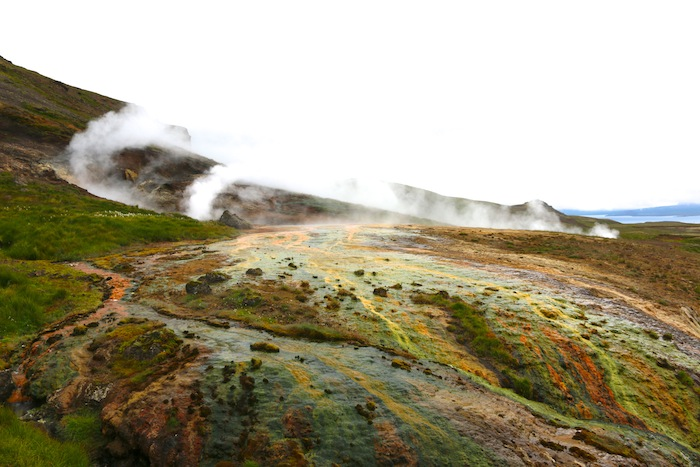 Colourful ground in Iceland
