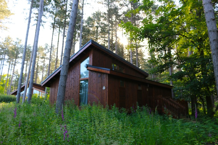 Forest Holidays Silver Birch Cabin Review