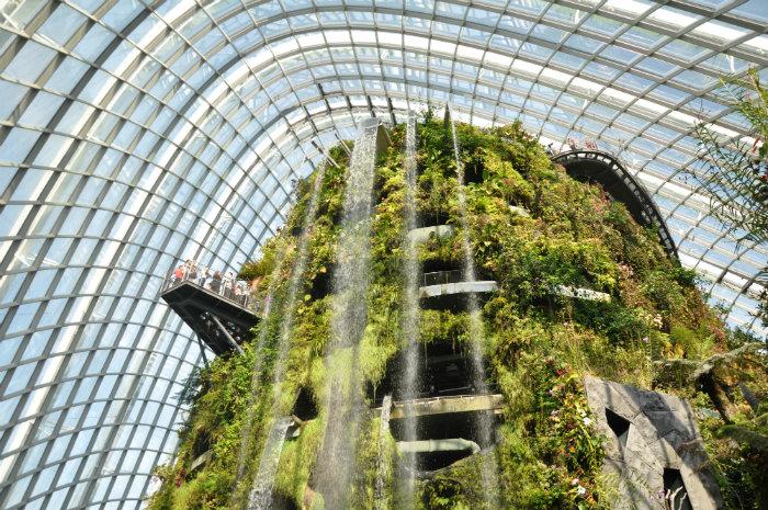 Essential Singapore Experiences - Nature