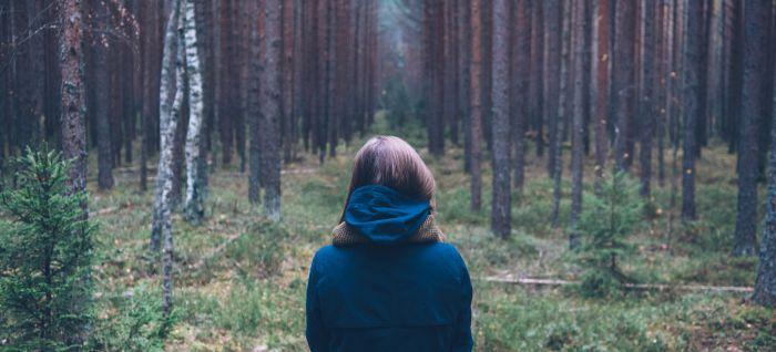 woods resized