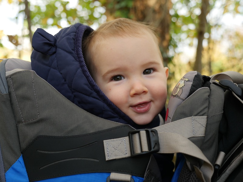 The Tiny Travel Hack reviews the LittleLife All Terrain Carrier