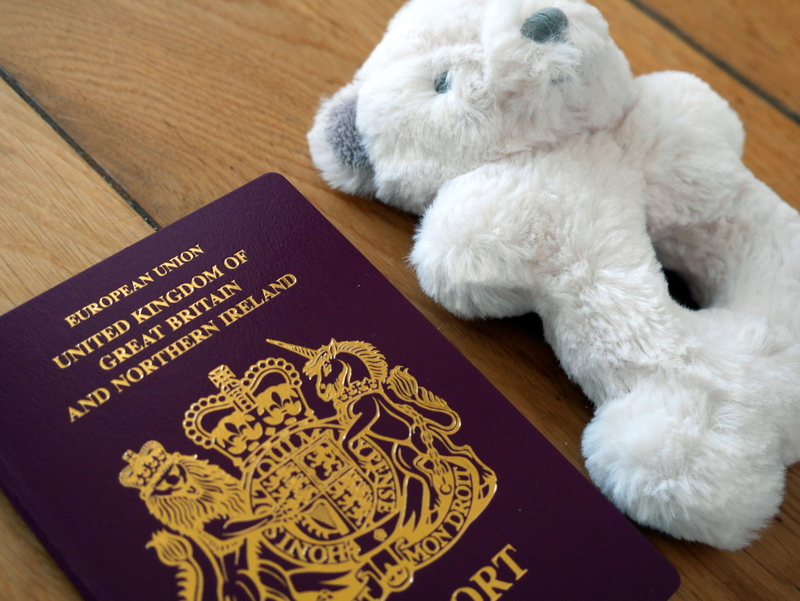 Baby Passport, Baby Travel