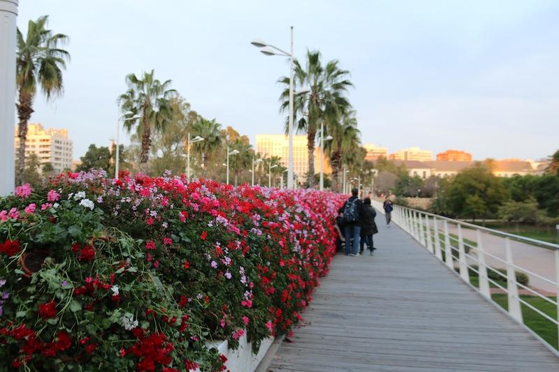 Flower bridge Valencia