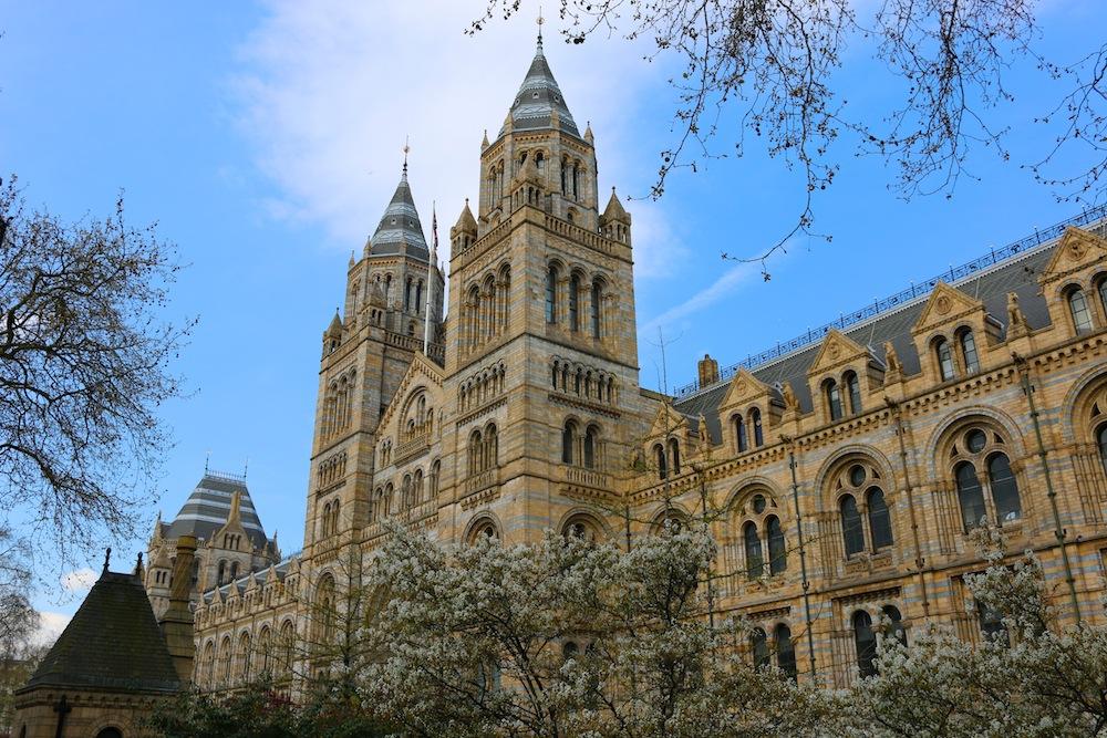 Natural history musuem London
