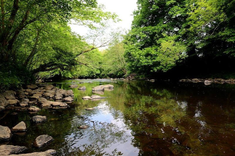 Roe Valley Country Park - The perfect weekend in Northern Ireland