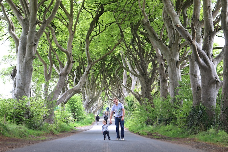 The Dark Hedges, Northern Ireland. Game of Thrones film location