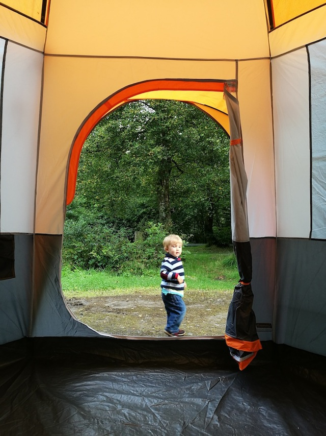 Camping in the Forest, Beddgelert