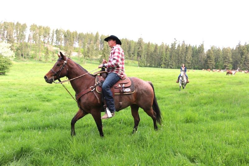cowboy-at-flathead-lake-lodge