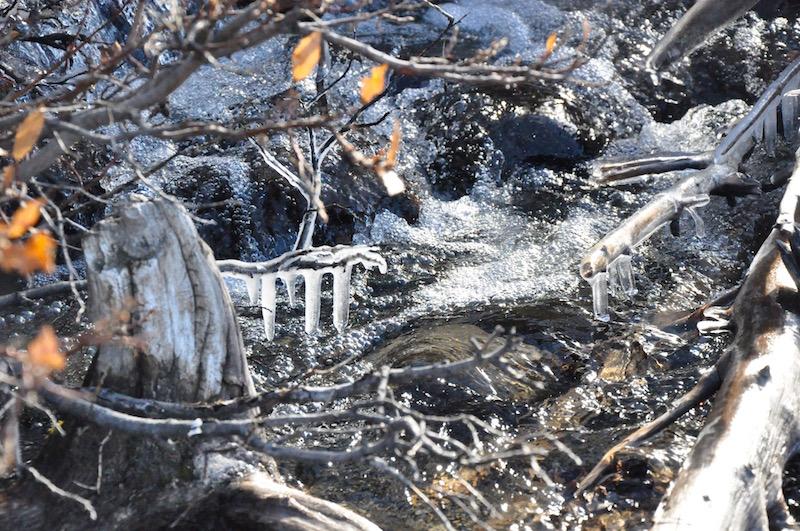 Finding Wilderness in Kluane National Park