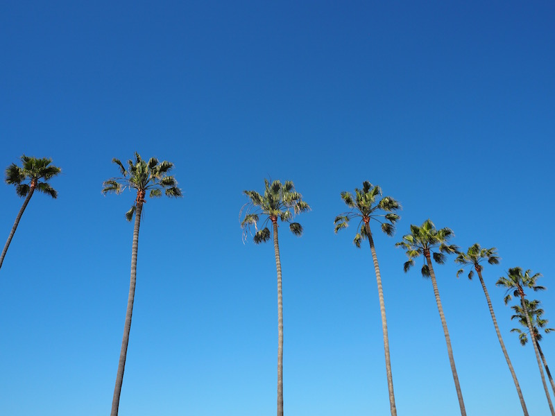 The Travel Hack's Guide to Newport Beach