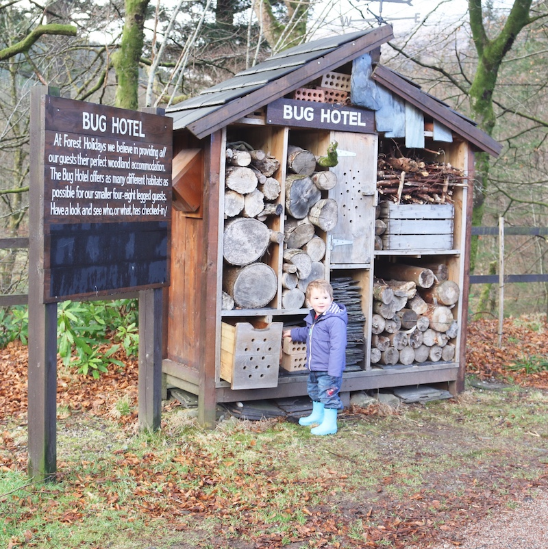Forest Holidays Review - bug hotel in scotland