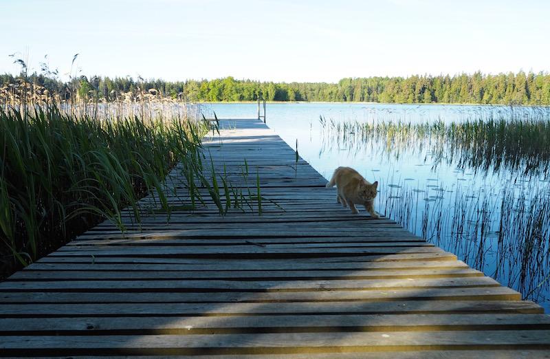 Lithuania: A Land of Surprises