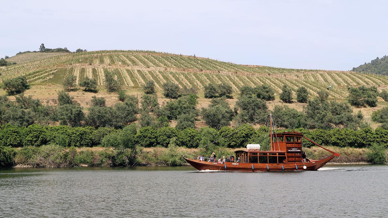 boat trip douro river