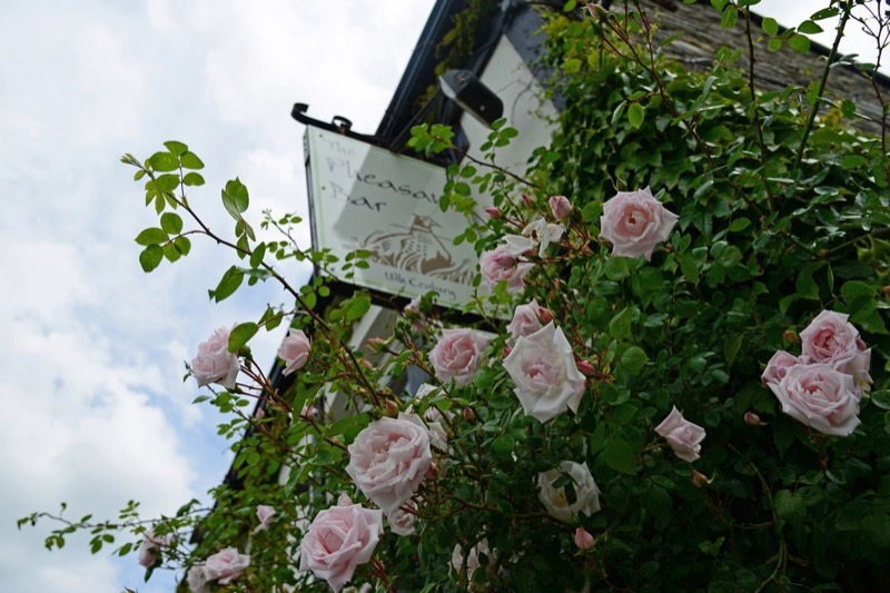 Sign for The Pheasant Bar on a wall of pink roses at The Mulberry Inn - 10 of the Best Llangollen Hotels (and Other Memorable Accommodation)
