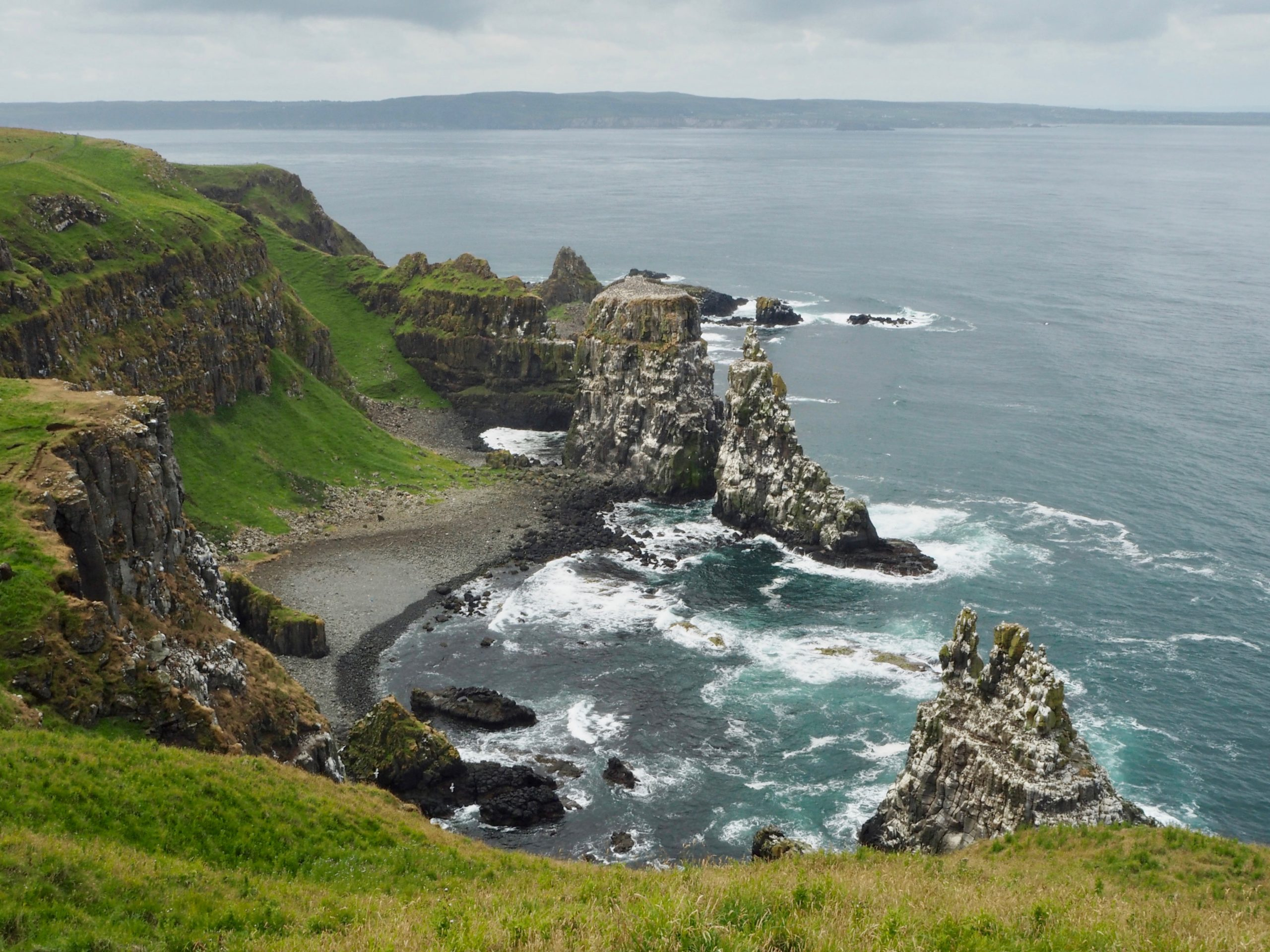 Seabird colonies Rathlin Island - Beyond the City Break in Belfast with Flybe and Avis