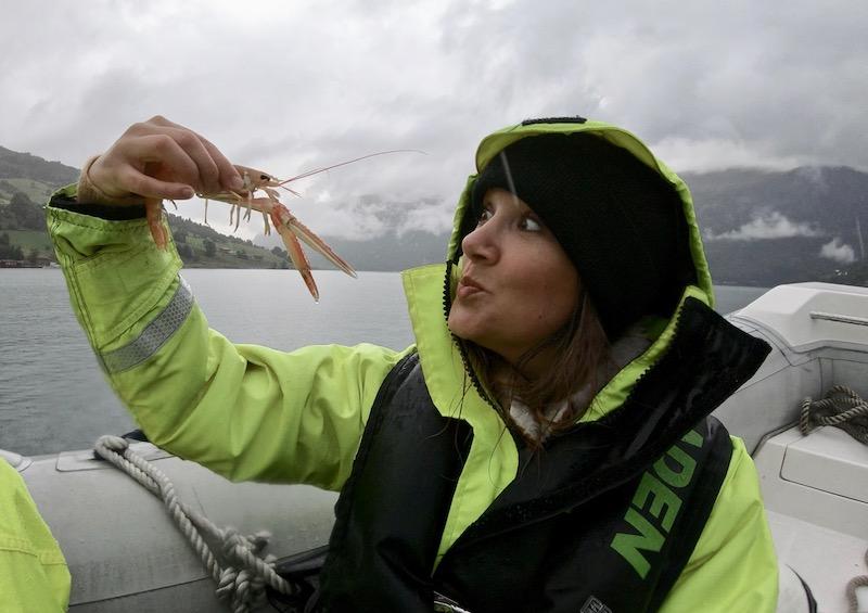 Rib boat ride Norwegian Fjords P&O Cruises