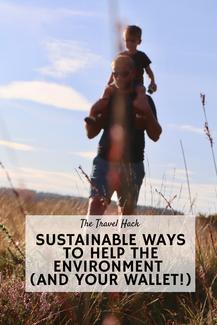 Sustainable ways to help the environment and your wallet