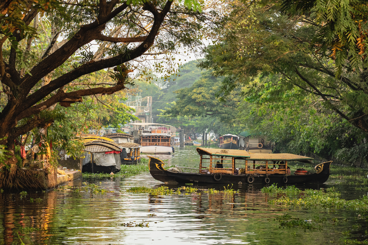 India: Tips for planning your holiday to Kerala