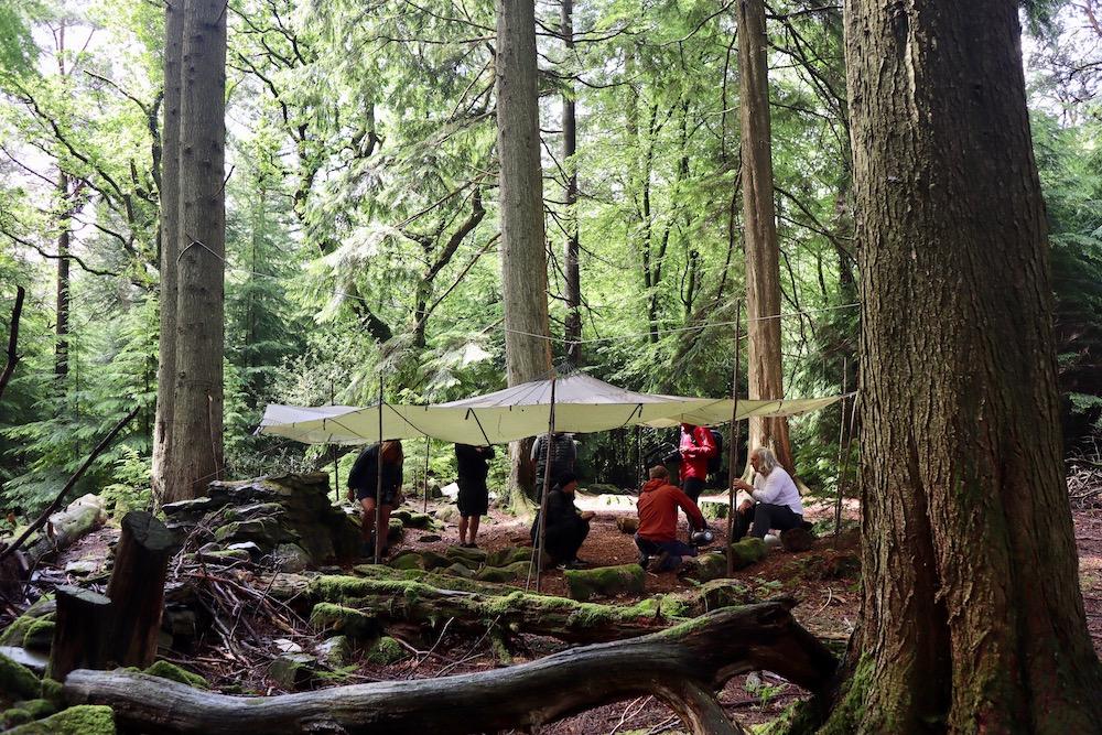 Forest Camp in Beddgelert
