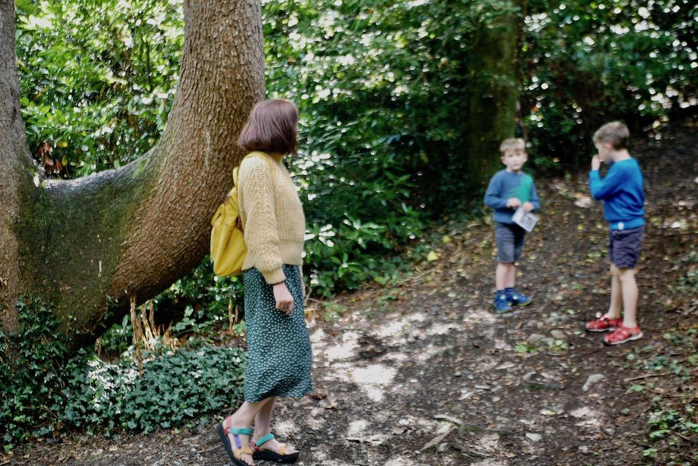 Woodland walk in Portmeirion