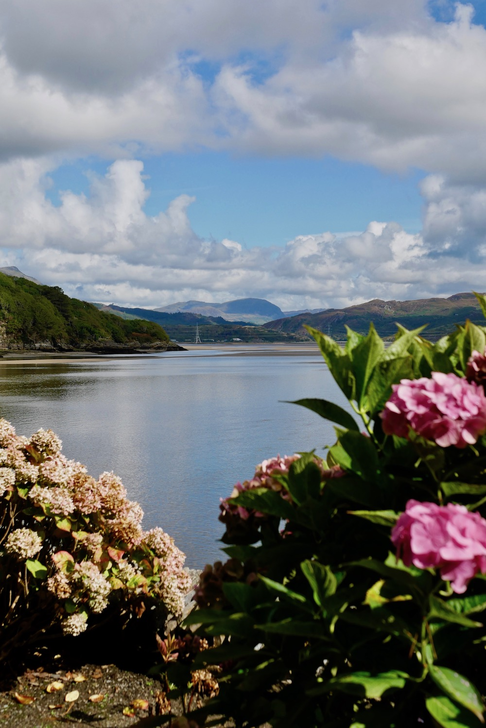 Views from Portmeirion